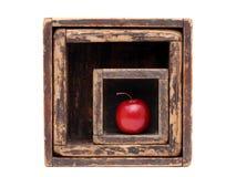 Rött äpple i gammal träask Royaltyfri Fotografi