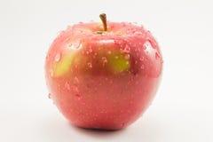 Rött äpple med droppar Arkivbild