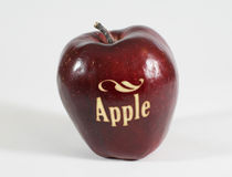 Rött äpple med ordet - Apple - Royaltyfria Foton