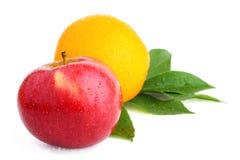 Rött äpple och apelsin på vit Royaltyfri Fotografi