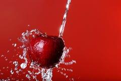 Rött äpple på en röd bakgrund Fotografering för Bildbyråer