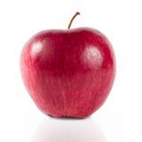 Rött äpple på en vitbakgrund Fotografering för Bildbyråer