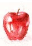 Rött äpple på en vitbakgrund Arkivbild