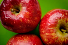 Rött äpple tre på en grön bakgrund Royaltyfria Bilder