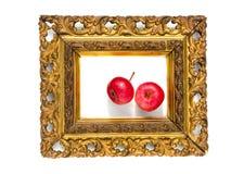 Rött äpple två i forntida antik guld- bildram Royaltyfri Fotografi