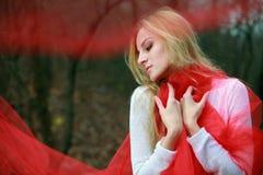 rött Royaltyfria Bilder