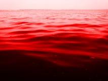 Rött Arkivfoto