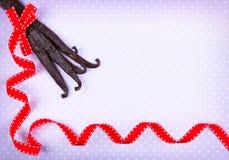 Rött band för vaniljfröskidor arkivfoton