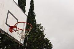 Rött basketbeslag och träd royaltyfri fotografi