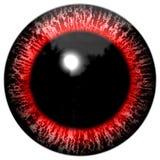 Rött blodigt främling- eller fågelöga på den vita bakgrunden Royaltyfri Illustrationer