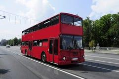 Rött bussa arkivbilder