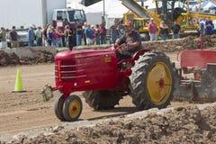 Rött dra för Massey Harris traktor Arkivbilder