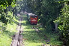 Rött drev på järnvägspåren med det gröna trädet som omger vägen royaltyfri fotografi