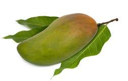 Rött elfenben för mango som isoleras på vit bakgrund royaltyfri bild