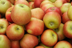 Rött för raddor nytt och gult äpple arkivbilder