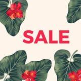 Rött försäljningstecken på promoaffischen med sidor och blommor stock illustrationer