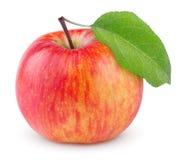 Rött gult äpple med bladet Royaltyfria Foton