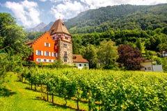 Rött hus i Liechtenstein Arkivfoto