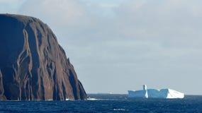 Rött huvud i Newfoundland arkivfoton