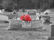 Rött i svart & vit Fotografering för Bildbyråer
