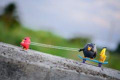 Rött ilsket fågelhandtag hans vänner upp kullen med ett fäst rep Royaltyfri Bild