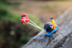 Rött ilsket fågelhandtag hans vänner upp kullen med ett fäst rep Royaltyfria Bilder