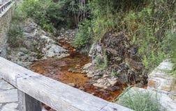 Rött järn fyllde naturligt bergvatten som bildar en flod royaltyfri fotografi