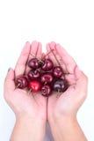 Rött körsbär Arkivfoto