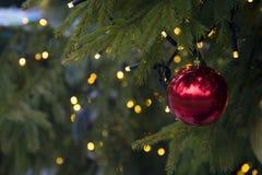 Rött klumpa ihop sig på en julgran Royaltyfria Foton