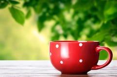 Rött kupa Royaltyfri Bild