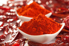 Rött kyligt pulver. royaltyfri fotografi