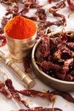 Rött kyligt pulver. royaltyfria foton