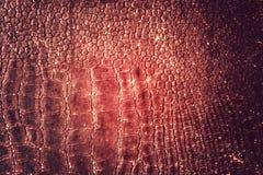 Rött läder Arkivbilder