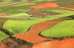 Rött land arkivfoton