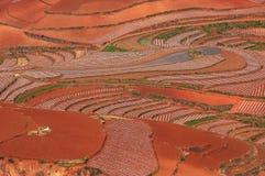 Rött land eller kallad Gud palett Royaltyfri Fotografi