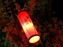 rött litet för lykta Royaltyfri Foto