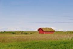 Rött litet hus med gräs på taket Arkivbild