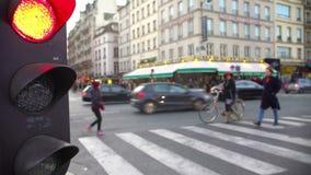 Rött ljus för gatatrafik, gångarekorsning väg, aktivt stadsliv stock video