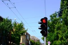Rött ljus på trafikljus Royaltyfri Fotografi