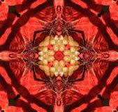 rött med den gula kalejdoskopet, royaltyfri illustrationer