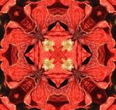 rött med den gula kalejdoskopet, stock illustrationer