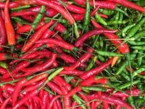 Rött och grönt av thailändsk chilibakgrund Arkivbild