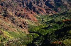 Rött och grönt i den Waimea kanjonen Arkivfoton