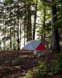Rött och vitt tält i en Forest Camping Trees Royaltyfri Foto