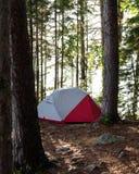 Rött och vitt tält i en Forest Camping Trees Royaltyfri Fotografi