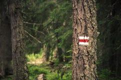 Rött och vitt tecken på träd Fotografering för Bildbyråer
