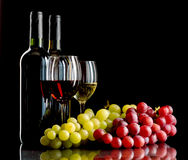Rött och vitt vin med druvor royaltyfri foto