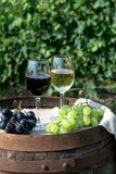 Rött och vitt vin med druvor i natur Arkivbilder