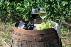Rött och vitt vin med druvor i natur Royaltyfri Bild