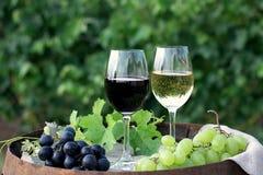 Rött och vitt vin med druvor i natur Fotografering för Bildbyråer
